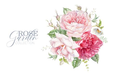 Watercolor card with pink roses and hellebore