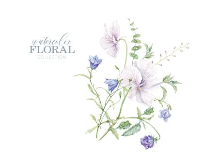 Watercolor hand drawn composition with white violet and bellflowers isolated on white background. Botanical arrangement for cosmetics, women products package, summer background,wedding greeting design