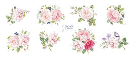 Watercolor hand drawn composition set with pink rose, berries and leaves isolated on white background. Botanical arrangement for natural cosmetics, women products, summer background, greeting design