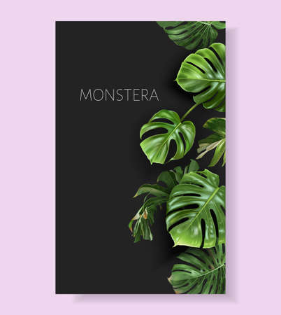 Vector monstera border with green tropical leaves