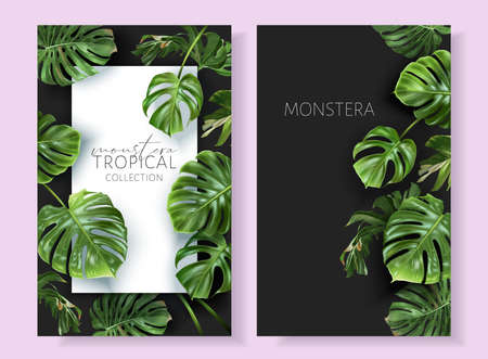 Vector monstera frames with green tropical leaves