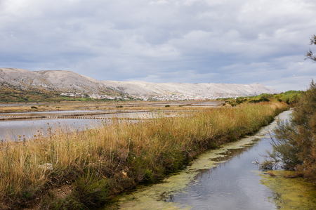 next horizon: sweet water stream next to a saline. leading lines to the horizon. picture taken in pag, croatia Stock Photo