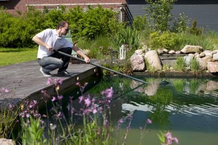 bassin jardin: homme pur son �tang de jardin avec une �puisette, perch� sur une terrasse en bois, des pierres et des buissons en arri�re-plan