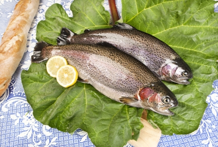 two freshly caught trouts on a rhubarb leaf served on a wooden board with crusty bread, blue tablecloth with embroidered flowers,  close-up  photo