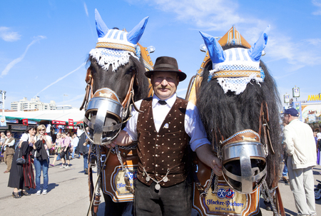coachman: Oktoberfest, Munich, Germany, 25092013, two large draft horses at the Oktoberfest before a carriage held by coachman Editorial