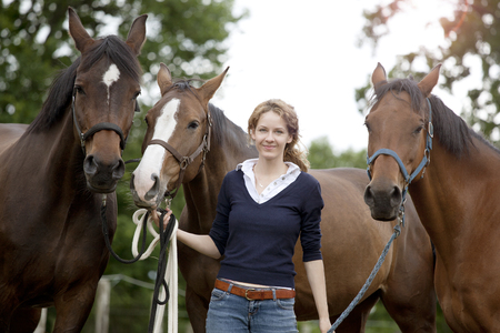 a woman holds her three horses with halter on pasture Stock Photo
