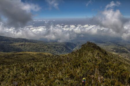 kilimanjaro: Kilimanjaro trekking