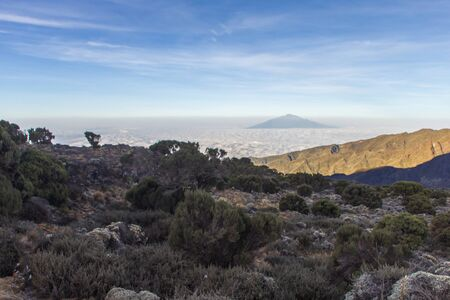 kilimanjaro: mount kilimanjaro