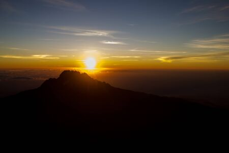 kilimanjaro: Kilimanjaro sunrice