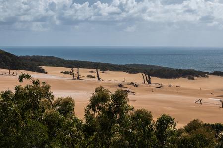 fraser: Fraser island sand dunes - australia