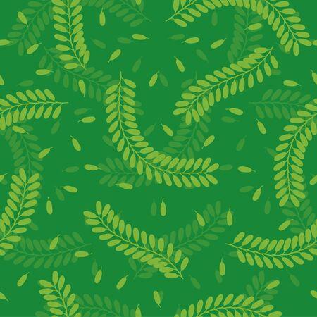 tamarindo: Serie di foglie Tamarind senza saldatura Vettoriali