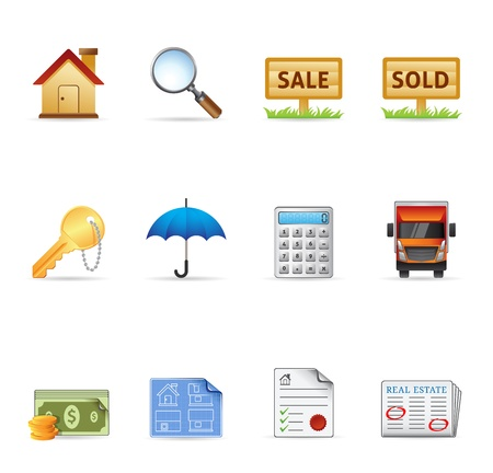 Web Icons - Real Estate Stock Vector - 13650429
