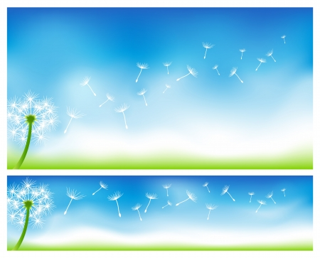 Dandelion banners EPS 10 with Gradient Mesh and transparencies Stock Vector - 17232520