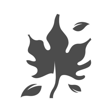 aging process: Maple leafe icon in black and white grey single color. Autumn fall Canada Illustration