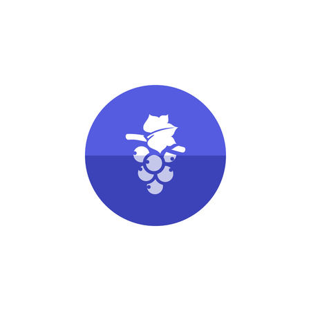 grape fruit: Grape icon in flat color circle style. Fruit berry dessert sweet organic