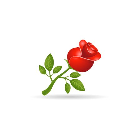 Rose icon in color. Flower plant romantic Illustration