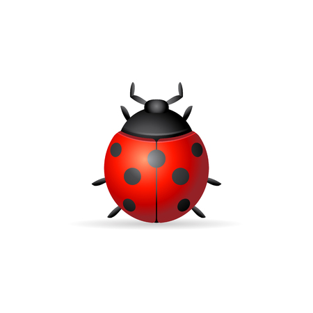 Bug icon in color. Insects, computer virus