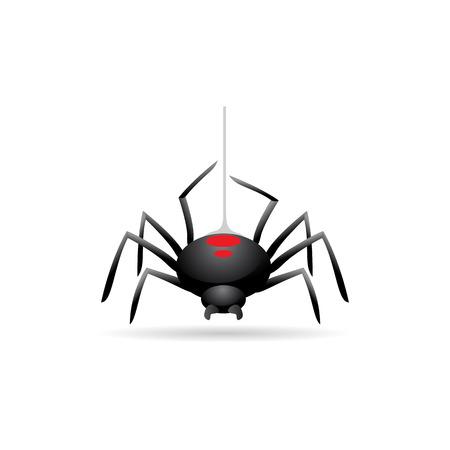 Spider icon in color. Animal arachnid spooky Halloween