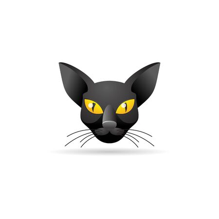 superstitious: Cat icon in color. Animal black kitten