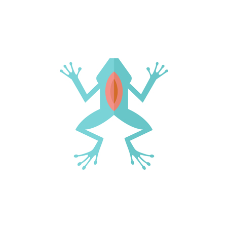 biology lab: Lab frog icon in flat color style. School experiment biology lesson study