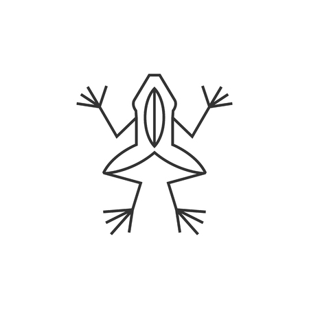 biology lab: Lab frog icon in thin outline style. School experiment biology lesson study