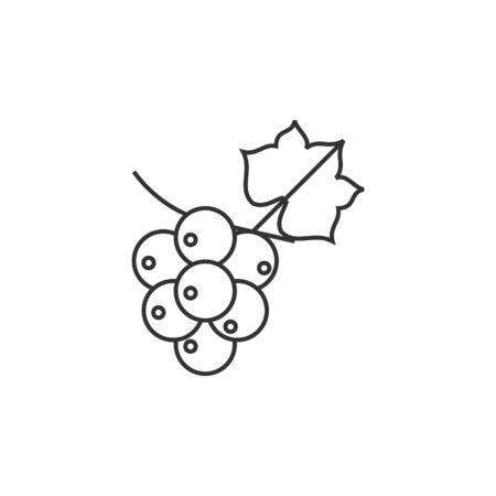 grape fruit: Grape icon in thin outline style. Fruit berry dessert sweet organic Illustration