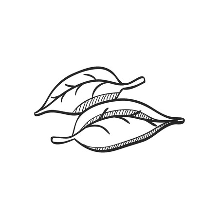 grey: Leaves icon in doodle sketch lines. Green environment