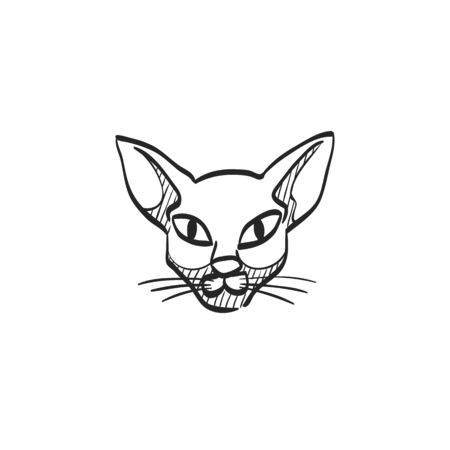line drawings: Cat icon in doodle sketch lines. Animal Halloween symbol dark black kitten fear Illustration