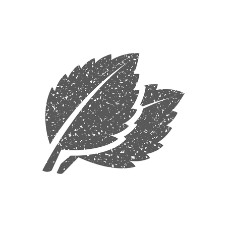 Basil leaves icon in grunge texture. Vintage style vector illustration.