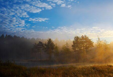 Foggy sunrise Stock Photo - 757337