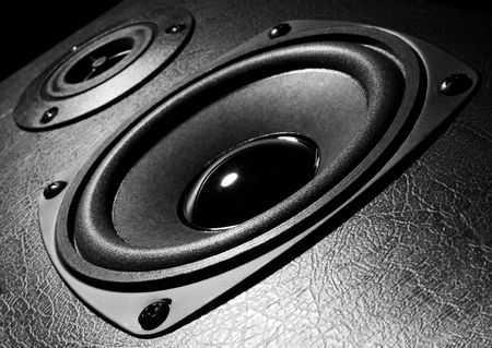 eq: Two speakers, black and white close-up photo