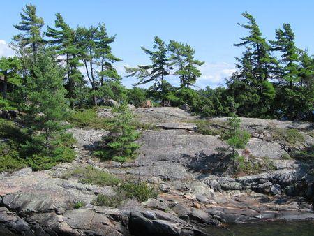 モミの木を吹きの風の中で岩に 2 脚の椅子 写真素材