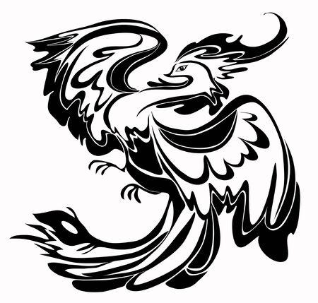 black and white: Black and white bird,