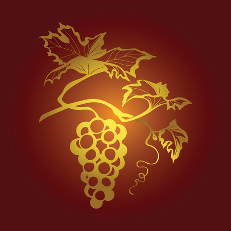 gold leaf: red vector illustration of grapes, image branches of grapes vines Illustration