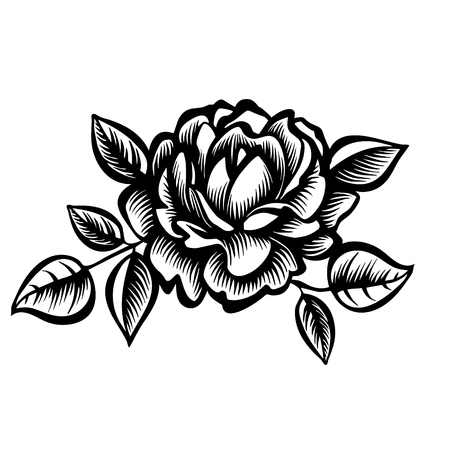 Vector black and white rose flower, decorative stylized peony