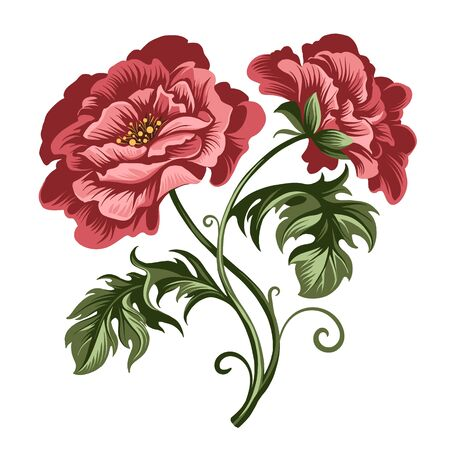 vector decorative red peony and rose flowers