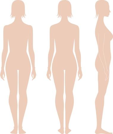 ilustración de la figura mujeres s Siluetas frente, espalda, vista lateral Ilustración de vector