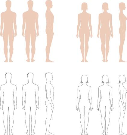 Vector illustratie van de mannen s en vrouwen s cijfers Voorkant, achterkant, zijkant uitzicht Silhouettes
