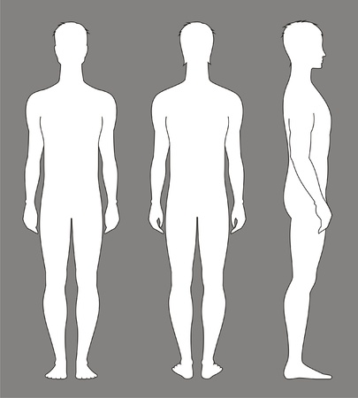 nude man: Vector illustration of men s figure  Front, back, side views  Silhouettes