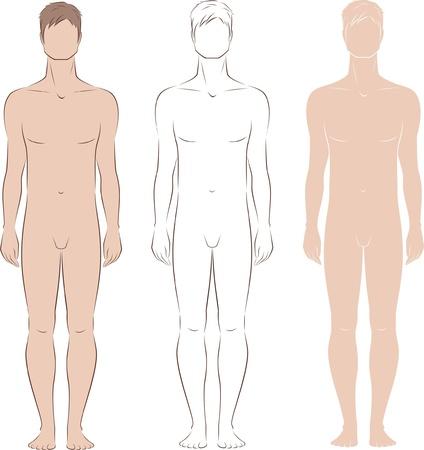 desnudo masculino: Ilustraci�n vectorial de los hombres s figura Vista frontal Silhouettes