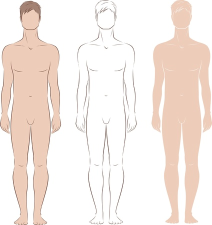 nude male: Vector illustration of men s figure  Front view  Silhouettes