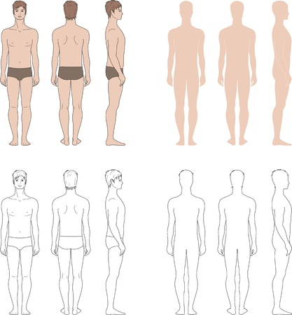 Ilustración vectorial de los hombres s figura frontal, posterior, lateral ve cuatro opciones