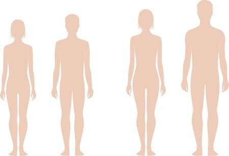 Vector illustratie van de tiener s figuur Verandering in proporties 12 en 15 jaar Silhouettes