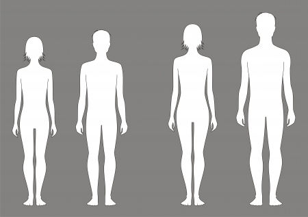Ilustracji wektorowych nastolatka s Wykres zmian w proporcji 12 do 15 lat Sylwetki