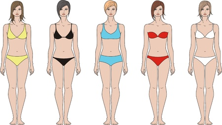 Vector illustration of women s figure  Front view  Different styles