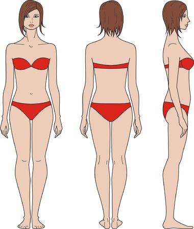 Vector illustration de la figure du Front de la femme, le dos, des vues de c?t? Vecteurs