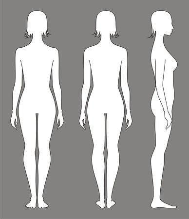 corps femme nue: Vector illustration de la figure du Front de la femme, le dos, les vues latérales Silhouettes
