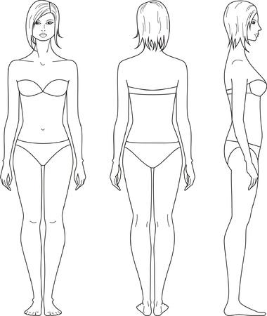 女性の図前面、背面、側面ビューのイラスト
