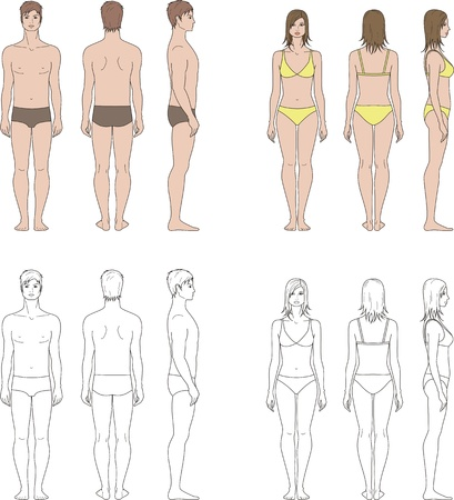 Vector illustration of human s figure  Man, woman  Front, back, side views Illustration