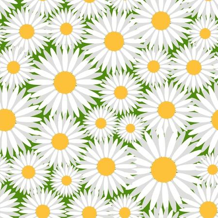 Vector illustratie van naadloze patroon met camomiles